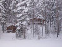 kaski-talvikuva